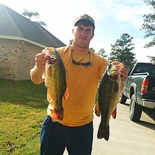 Chance Downs Same thing Stick bait
